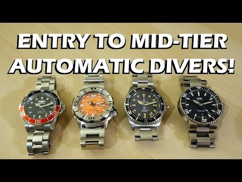 Automatic Dive Watch Entry to Mid-Tier Comparison: Invicta, Seiko, Steinhart, Oris - Perth WAtch #71