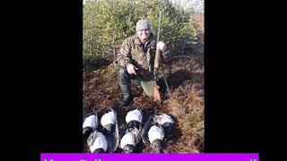 Охота в карелии осень 2019 год