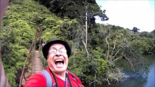 Puente Hamaca &  Bosque Guilarte Adjuntas Puerto Rico