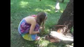Grace Finding the Fairy Tree House