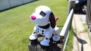 Zoomer Zuppies Review the Interactive Robotic Dog (SCARLET)