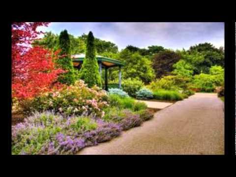 les plus beaux jardins de fleurs wmv