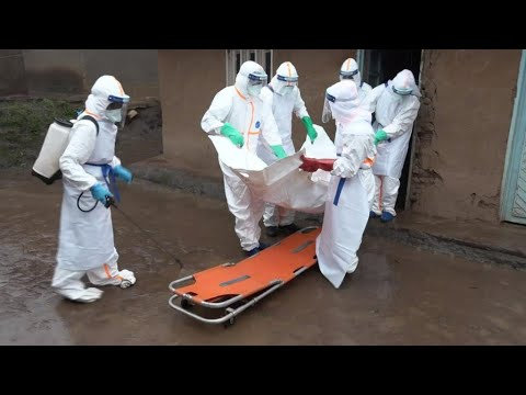WHO says Ebola outbreak in DR Congo is not yet a global emergency