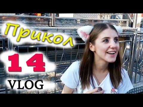 Видео, ч.14 VLOG Прогулки с Миникотиком - Затралили друзей