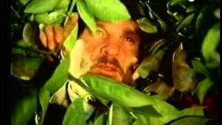 הגן - צחי נוי - רמי האופנוען - The Garden -Zachi as Rami