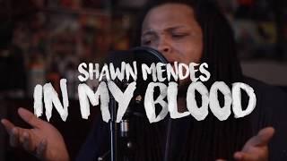 In My Blood - Shawn Mendes (Kid Travis Cover) #InMyBlood