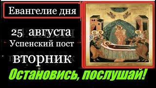 25 августа Вторник Евангелие дня с толкованием Апостол дня Церковный календарь