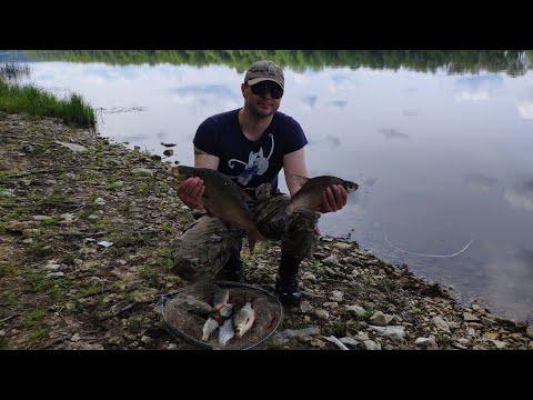 #Рыбалка на Оке#Донки#Лещ#Плотва#Ока