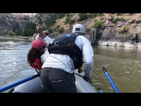 Great Takes On Salmon Fly Hatch  Black Canyon Gunnison River