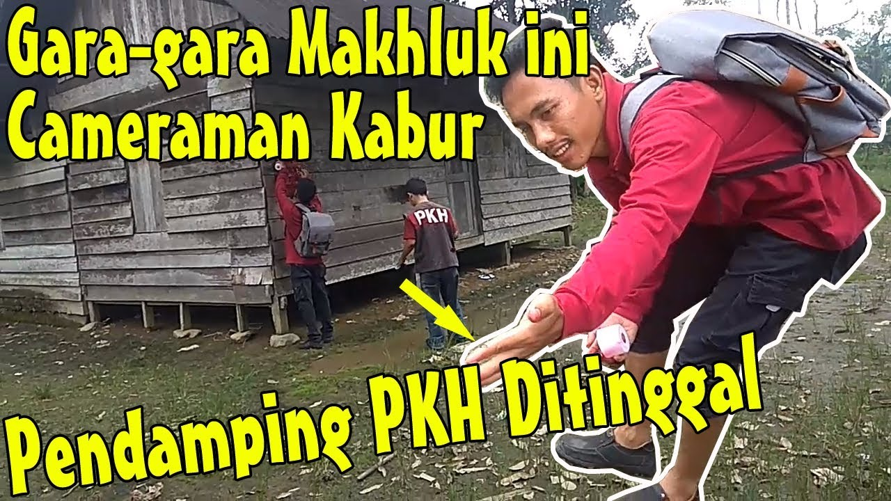 Cameraman Dan Para Pendamping PKH D1s3r4ng Makhluk M3ng3rik4n Dihalaman Rumah KPM