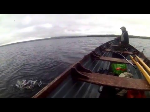 Lough Melvin Fly Fishing .