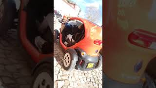 Video Castelo fe obdos em Portugal download MP3, 3GP, MP4, WEBM, AVI, FLV Agustus 2018
