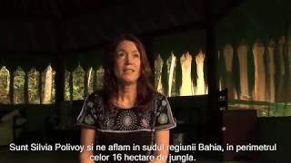 Introducere Ayahuasca - Centrul SpiritVine, Brazilia