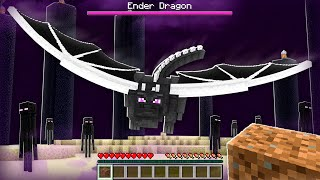 BEATING THE ENDERDRAGON WITH A DIRT BLOCK!
