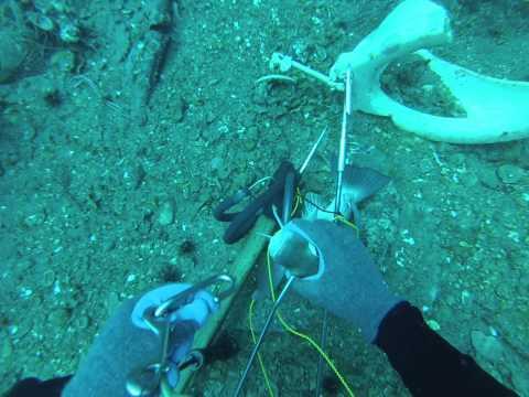 deep wreck sarasota