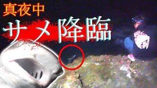 真夜中の離れ磯で凶暴なサメと対決!【#5 宮古島釣り遠征2019/4】