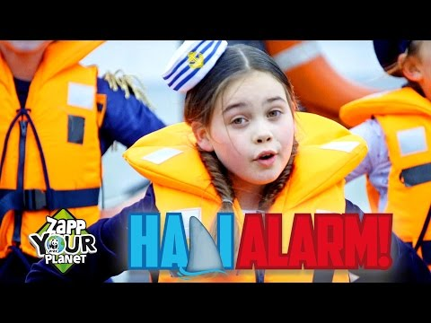Kinderen voor Kinderen - Haai-alarm! (Officiële Zapp Your Planet videoclip)