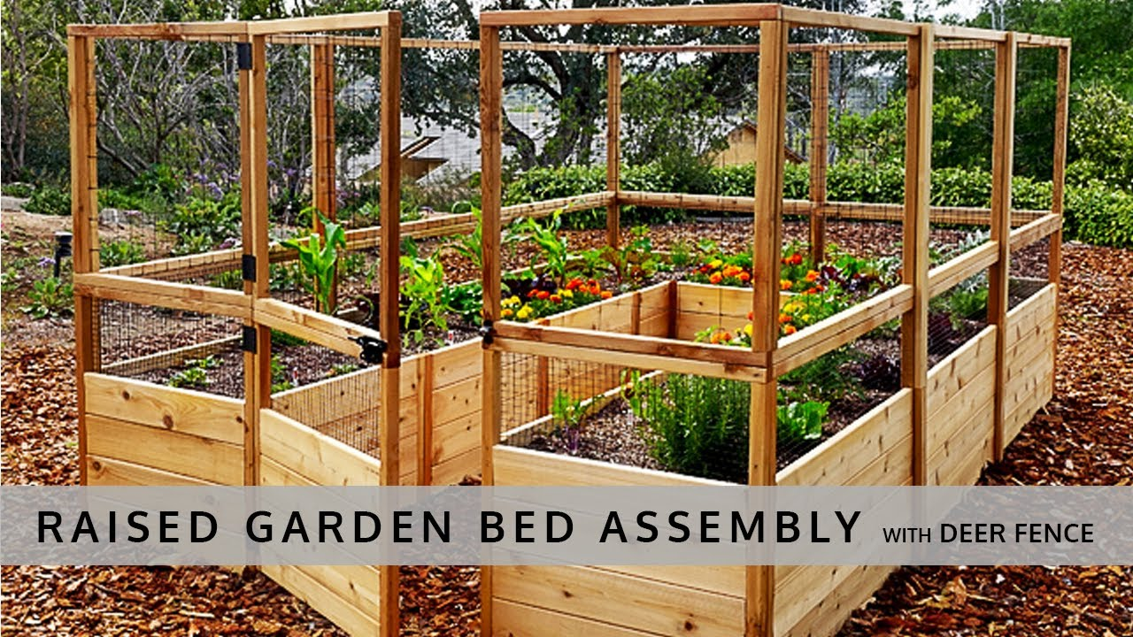 Ordinaire Raised Garden Bed With Deer Fence 8x12 Assembly