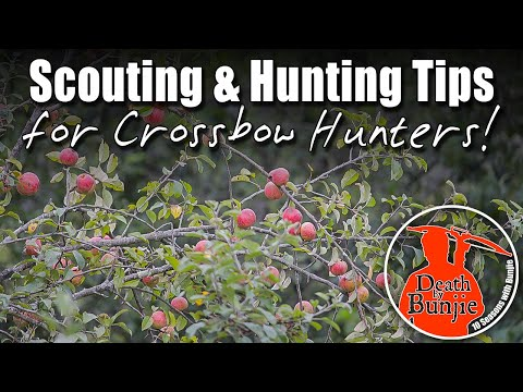 13 Scouting & Hunting Tips For CROSSBOW HUNTERS!