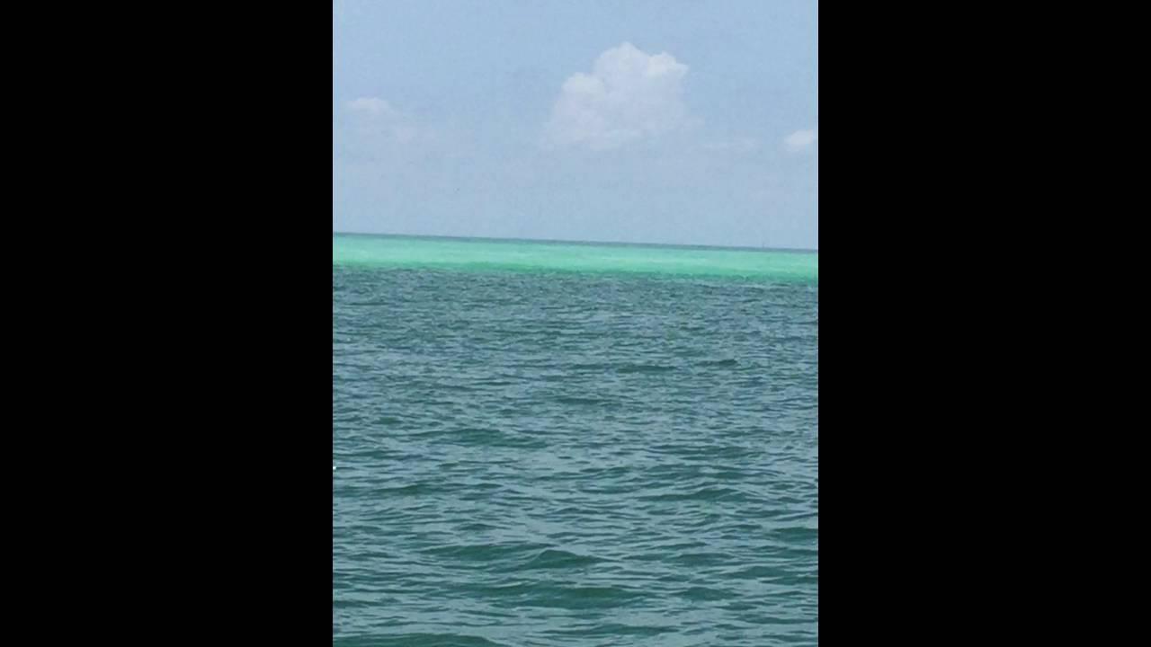 nude island Bradenton