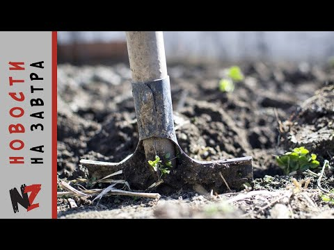 В Северной Осетии экс прокурор убил жену и закопал ее на даче