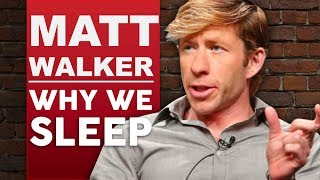 MATTHEW WALKER - WHY WE SLEEP Part 1/2 | How To Sleep Better & Improve Your Life | London Real
