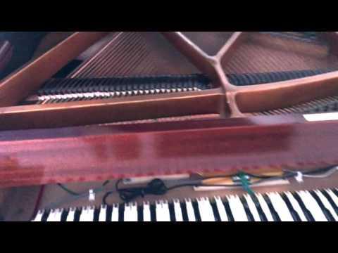 grand piano to digital piano conversion perth piano tuning pianotech youtube. Black Bedroom Furniture Sets. Home Design Ideas