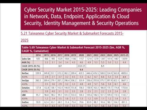 Cyber Security Market 2015-2025 Report