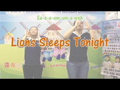 MRC 3Q Junior | Holiday Camp Theme Song 2017 -  Lion Sleeps Tonight Ver2