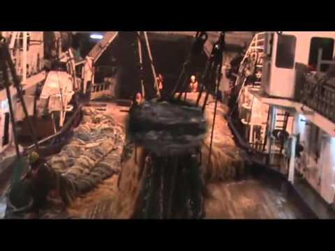 Выборка трала в шторм на РТМКС