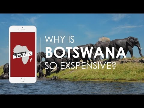 Why is Botswana so expensive? Rhino Africa's Travel Tips