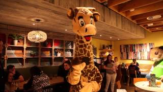 Free Radio Celebrate Launch of Giraffe at Birmingham Airport