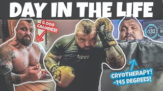 Day in the life of becoming a Professional Boxer | Eddie Hall