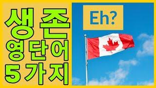 ??캐나다 '에서만' 쓰는 영어단어 5가지  [캐나다문…