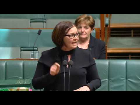 Speaking about Turnbull Government's NBN failure