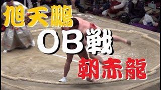 2018年2月に行われた大相撲トーナメント。最近の恒例となっている親方に...