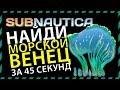 Subnautica ГДЕ НАЙТИ МОРСКОЙ ВЕНЕЦ
