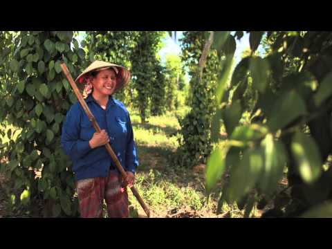 """Roots of Peace - Transforming """"Mines to Vines"""" Around the Globe"""