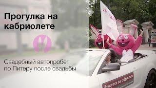 Автопробег на свадьбе Розового кролика