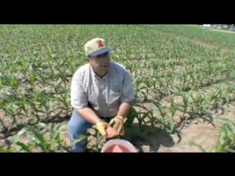 Bio Digest - Biotechnology and Farming