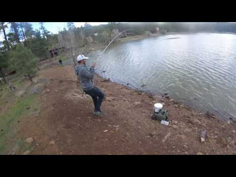 Flagstaff fishing for pike and yellow bullhead youtube for Fishing in flagstaff