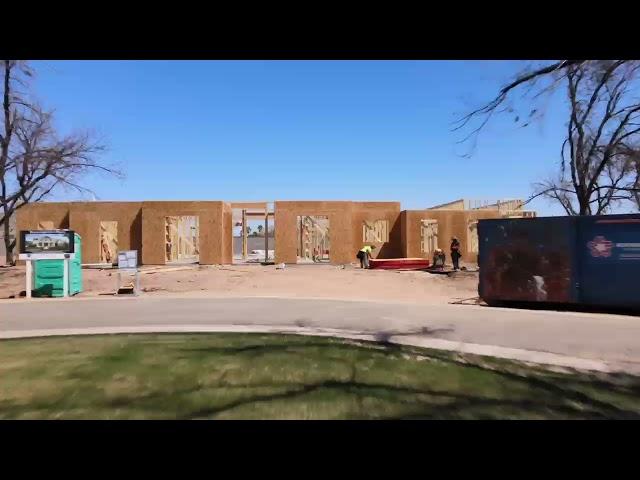 Pecans Build Progress