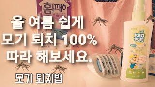 모기 퇴치 효과 100% 노하우