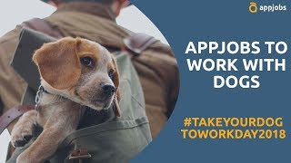 Take your dog to work by working with dogs 🐩 | AppJobs.com #takeyourdogtowork2018