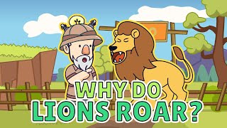 Why Do Lions Roar?