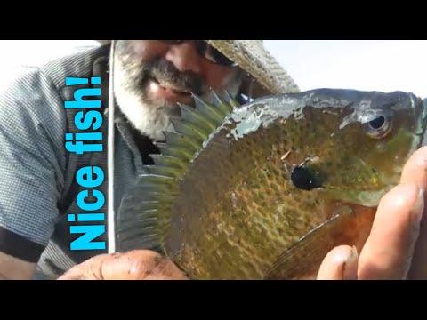 Fishing Upper Post Lake Wisconsin