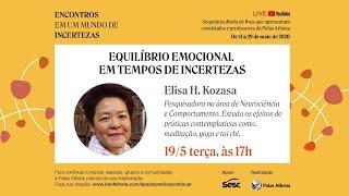 Equilíbrio Emocional em Tempos de Incertezas - Elisa H. Kozasa