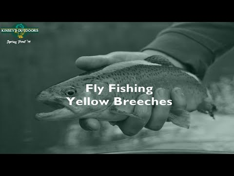Fly Fishing Yellow Breeches Creek PA   PA Spring Trout Series