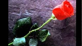 jer7 lmadi wael jassar lyrics with english translation