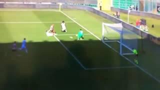 Video Gol Pertandingan Palermo vs Fiorentina